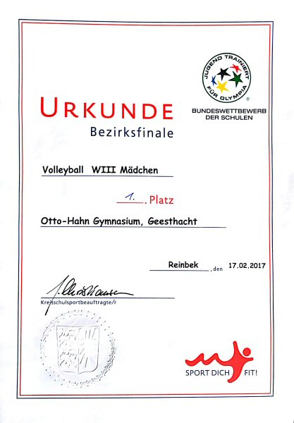 Urkunde Bezirksmeisterschaft Volleyball WIII m